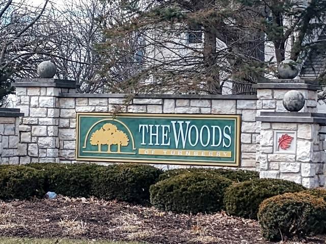 6995 Longmoor Drive, Lakewood, IL 60014 (MLS #10624238) :: Jacqui Miller Homes