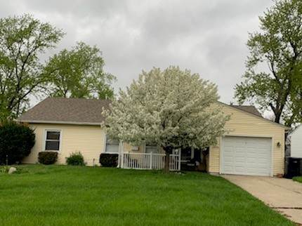 10240 Hyacinth Drive, Orland Park, IL 60462 (MLS #10678329) :: Ryan Dallas Real Estate