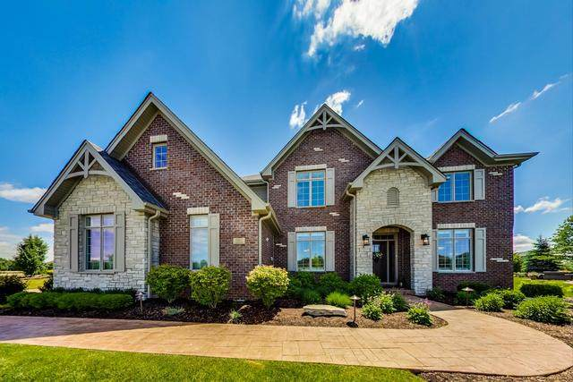 11557 Torino Way, Frankfort, IL 60423 (MLS #10751500) :: John Lyons Real Estate
