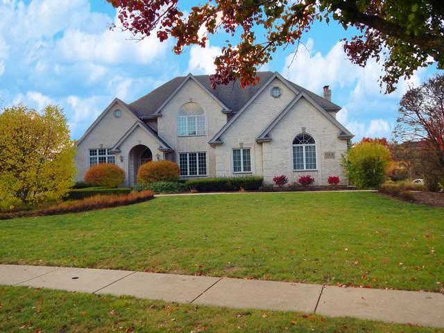 12431 Lake View Drive, Orland Park, IL 60467 (MLS #10880723) :: John Lyons Real Estate