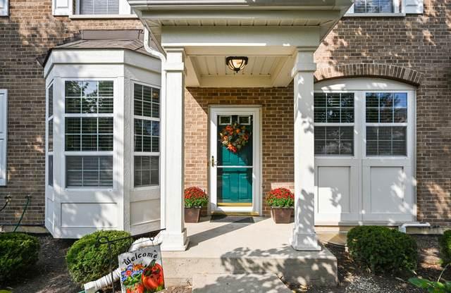 645 Dunhill Lane, Carol Stream, IL 60188 (MLS #10883084) :: John Lyons Real Estate