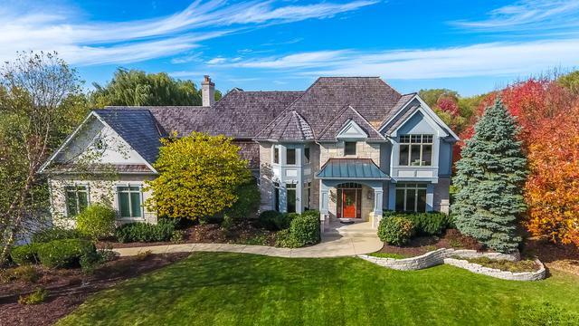 20556 N Amherst Lane, Deer Park, IL 60010 (MLS #09753810) :: The Jacobs Group