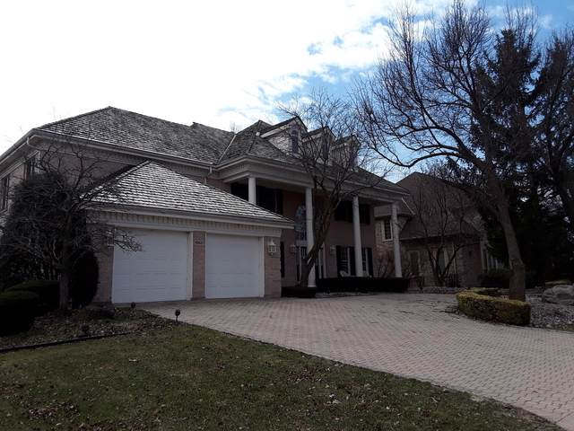 10627 Misty Hill Road, Orland Park, IL 60462 (MLS #10516536) :: The Mattz Mega Group