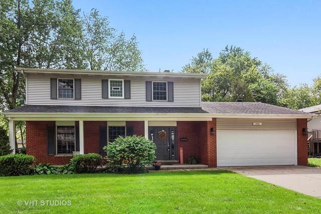 1021 Tamarack Drive, Darien, IL 60561 (MLS #10537363) :: Angela Walker Homes Real Estate Group