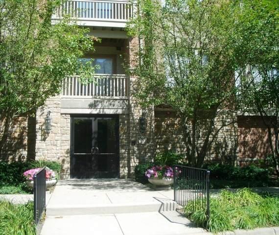 1781 Tudor Lane #206, Northbrook, IL 60062 (MLS #10598594) :: John Lyons Real Estate