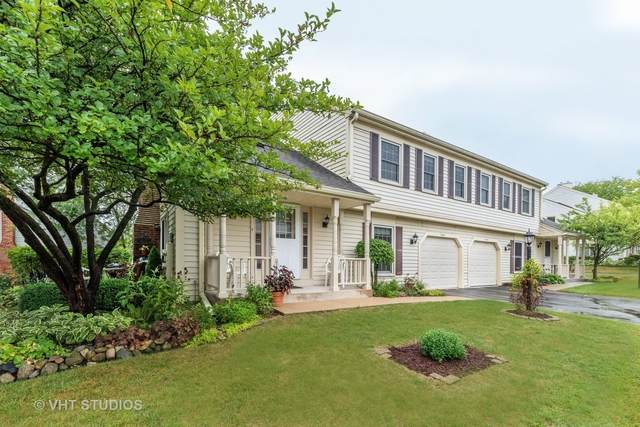 2665 College Hill Circle #2665, Schaumburg, IL 60173 (MLS #10847894) :: Property Consultants Realty