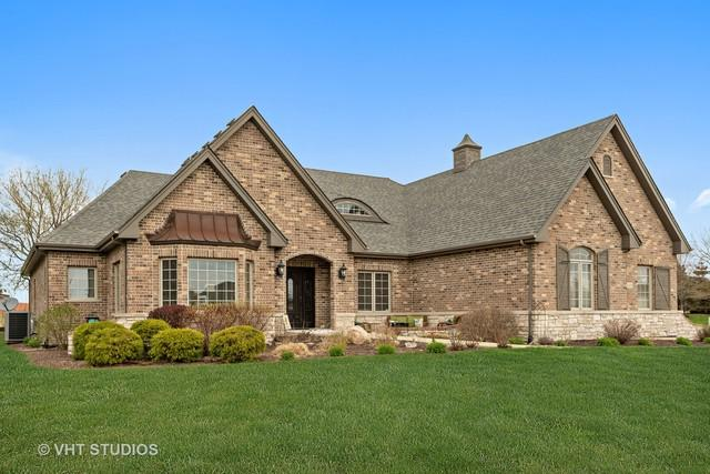 11650 Sapphire Court, Frankfort, IL 60423 (MLS #10352705) :: The Wexler Group at Keller Williams Preferred Realty