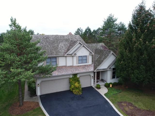 6306 Valley View Circle, Long Grove, IL 60047 (MLS #09649642) :: The Dena Furlow Team - Keller Williams Realty