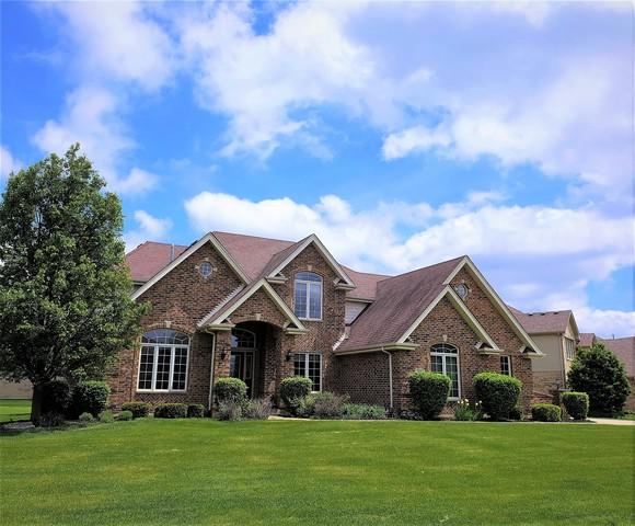 260 Monterey Drive, New Lenox, IL 60451 (MLS #09885839) :: The Dena Furlow Team - Keller Williams Realty
