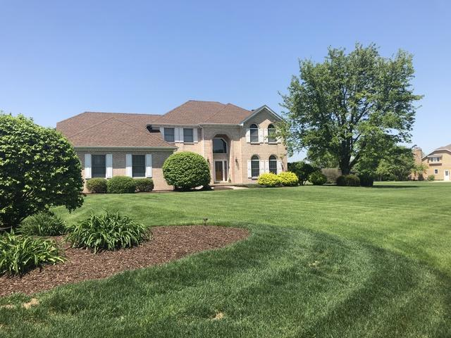 17359 S Mckenna Drive, Plainfield, IL 60586 (MLS #09908199) :: The Jacobs Group