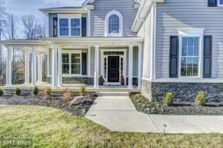 15841 Chalice Vine Court, Hughesville, MD 20637 (#CH9758355) :: Pearson Smith Realty