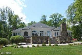 8173 Lake Rillhurst Road, Culpeper, VA 22701 (#CU8651657) :: Pearson Smith Realty
