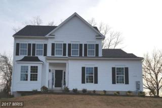 3509 Roy Shafer Road, Middletown, MD 21769 (#FR9566438) :: Pearson Smith Realty