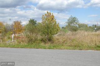 3 Sassafras, Wardensville, WV 26851 (#HD8243029) :: LoCoMusings