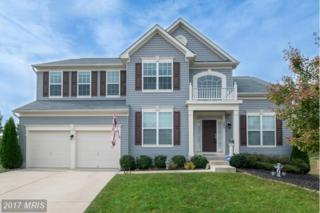 9804 Autumn Path Court, Fredericksburg, VA 22407 (#SP9751471) :: LoCoMusings