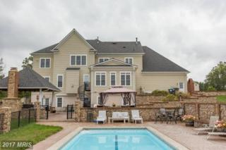 10 Lupine Drive, Stafford, VA 22556 (#ST9605535) :: Pearson Smith Realty