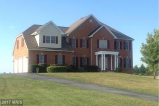 14210 Hicksville Road, Clear Spring, MD 21722 (#WA9612543) :: LoCoMusings