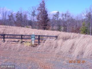Trotting Trial, Richardsville, VA 22736 (#CU7783184) :: LoCoMusings