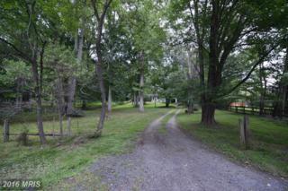 215 Deepwoods Drive, Great Falls, VA 22066 (#FX9564313) :: Pearson Smith Realty