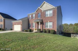 9533 Evergreen Circle, Fredericksburg, VA 22407 (#SP9806729) :: Pearson Smith Realty