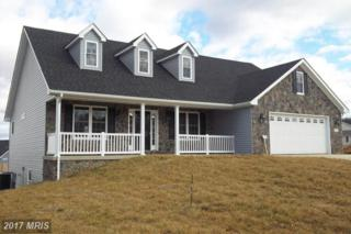 Oden Street, Front Royal, VA 22630 (#WR9542441) :: Pearson Smith Realty