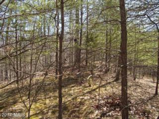 Boy Scout Road, Hedgesville, WV 25427 (#BE7469156) :: Pearson Smith Realty
