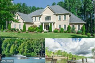 8330 Bearlake Drive, Spotsylvania, VA 22551 (#SP9615296) :: Pearson Smith Realty