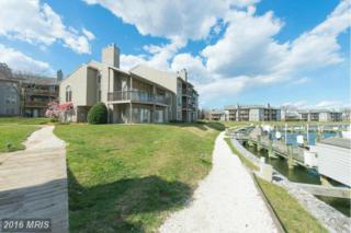 7030 Channel Village Court #202, Annapolis, MD 21403 (#AA9602426) :: Pearson Smith Realty