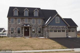 206 Matthew Drive, Chambersburg, PA 17201 (#FL9572583) :: LoCoMusings