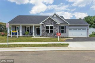 101 Addie Court, Fredericksburg, VA 22401 (#FB9537783) :: Pearson Smith Realty