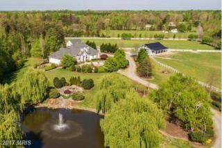 8920 Olde Meadow Way, Spotsylvania, VA 22551 (#SP9639825) :: LoCoMusings