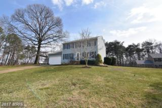 533 Bay Hills Drive, Arnold, MD 21012 (#AA9010604) :: Pearson Smith Realty