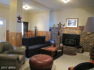 5206 Ritchie Highway, Baltimore, MD 21225 (#AA9835434) :: Pearson Smith Realty