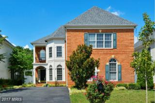704 Brannock Terrace, Annapolis, MD 21401 (#AA9837980) :: Pearson Smith Realty