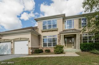 542 Wet Sand Drive, Severn, MD 21144 (#AA9858193) :: Pearson Smith Realty