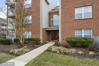 611 Admiral Drive #204, Annapolis, MD 21401 (#AA9863702) :: Pearson Smith Realty