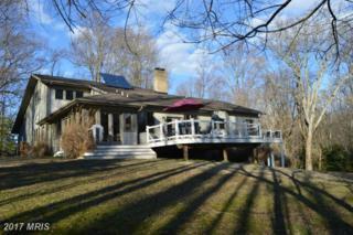 1006 Gomoljak Lane, Annapolis, MD 21401 (#AA9865725) :: Pearson Smith Realty