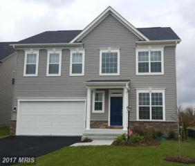 8116 Ridgely Loop, Severn, MD 21144 (#AA9866830) :: Pearson Smith Realty