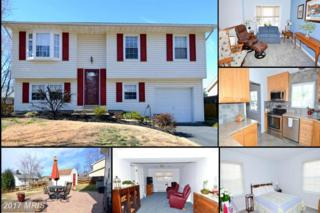 2477 Red Fall Court, Gambrills, MD 21054 (#AA9867781) :: LoCoMusings