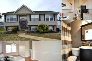 201 Bowie Avenue, Annapolis, MD 21401 (#AA9868014) :: Pearson Smith Realty