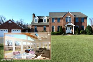 3 Poplar Point Road, Edgewater, MD 21037 (#AA9869387) :: Pearson Smith Realty
