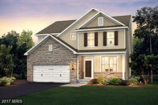 8204 Meadowood Drive #01, Hanover, MD 21076 (#AA9873579) :: Pearson Smith Realty