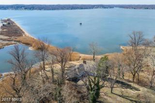 766 Skywater Road, Gibson Island, MD 21056 (#AA9875609) :: Pearson Smith Realty