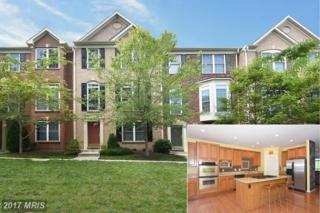 307 Helmsman Alley, Annapolis, MD 21401 (#AA9876443) :: Pearson Smith Realty