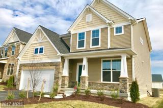 7941 Monrovia Drive, Hanover, MD 21076 (#AA9880298) :: Pearson Smith Realty