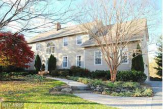 1204 Cherry Tree Lane, Annapolis, MD 21403 (#AA9880853) :: LoCoMusings