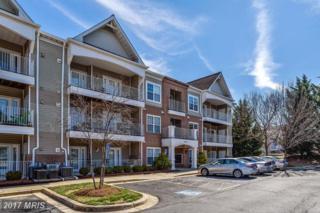 2013 Warners Terrace S #242, Annapolis, MD 21401 (#AA9883766) :: LoCoMusings