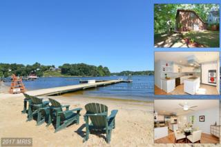 454 Hoenereng Trail, Annapolis, MD 21401 (#AA9885057) :: Pearson Smith Realty