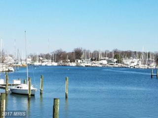 756 Fairview Avenue F, Annapolis, MD 21403 (#AA9887837) :: Pearson Smith Realty