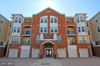 8616 Wintergreen Court #305, Odenton, MD 21113 (#AA9888159) :: LoCoMusings